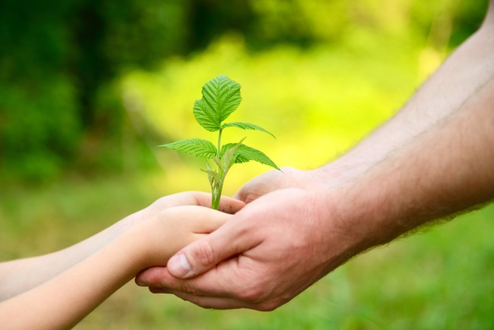 איך לסייע לילד בהתלבטויות שלו, על מנת שיכריע באופן מיטבי?